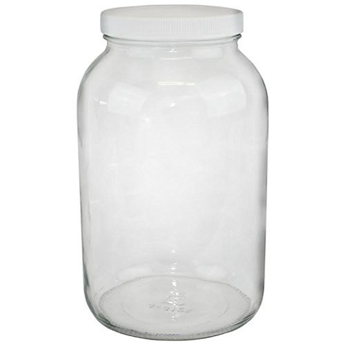 Glass Gallon Jar with lid