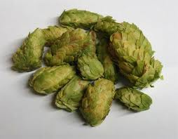 Chinook Whole Hops 1oz