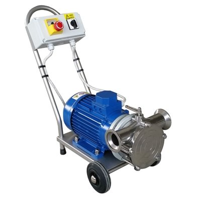 Variable Drive Must Pump (220v)