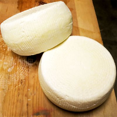 Thermophilic Cheese Culture