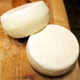 Thermophilic Cheese Culture (New England Cheesemaking) 5 pack